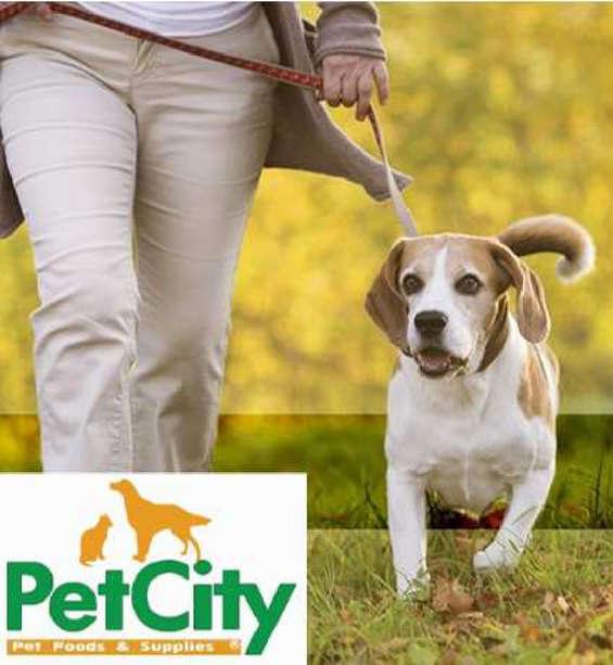 Ofertas de Pet City, super ofertas