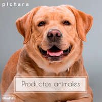 Productos animales