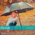 Ofertas de Ficcus, Ficcus Essential