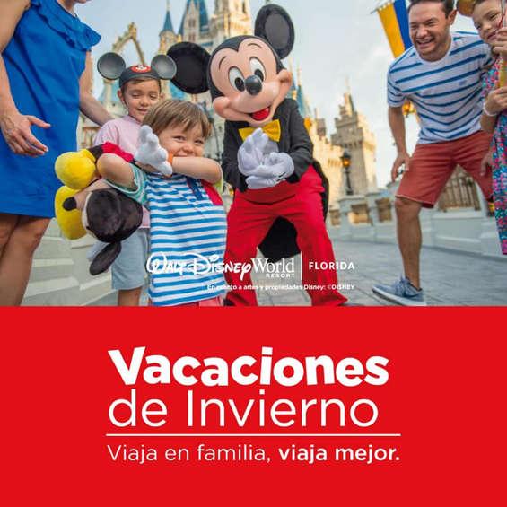 Ofertas de Cocha, Disney World